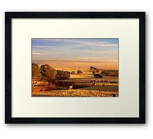Sheep Grazing at Sunset - Kanmantoo, South Australia Framed Print