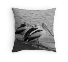 Placid Pelicans Throw Pillow