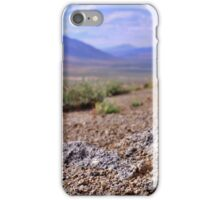 Kimberly Hill Wild Flowers iPhone Case/Skin