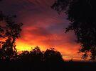 "'Northern Sky"" by debsphotos"