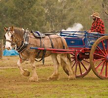 Dray On Parade by James Vereker