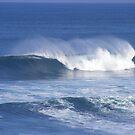 Even more open ocean perfection!!! by gamo