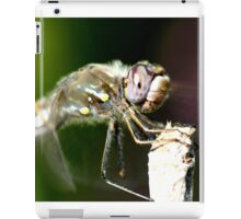 Up Close with a Purple Eyed Dragonfly iPad Case/Skin