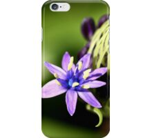 An Opening Bloom with More to Come iPhone Case/Skin