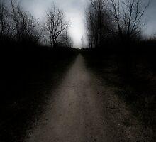 In Dreams by CarolynClicks
