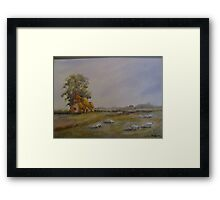 romney marsh  Framed Print