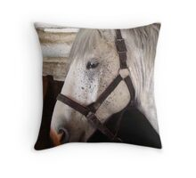 Grey Percheron Beauty Throw Pillow