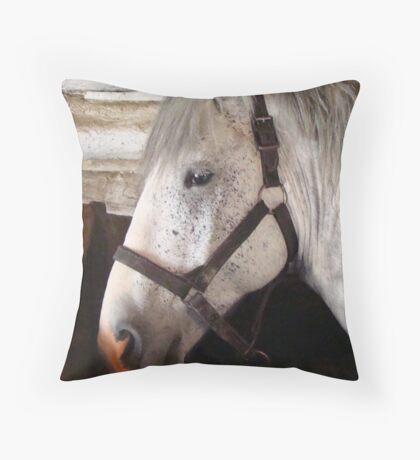 Grey Percheron Beauty Throw Pillow