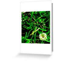 simple everday beauty Greeting Card