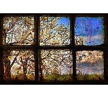 It's spring outside Photographic Print