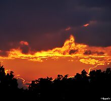 Fire in the sky by Raquel Perryman