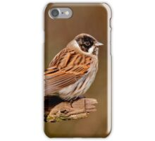 Reed Bunting iPhone Case/Skin