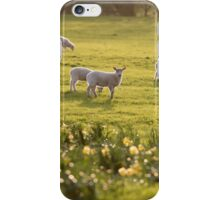 Spring Scene #1 iPhone Case/Skin