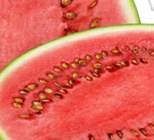 Watermelon #7 Sticker