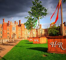 Hampton Court Palace - The Drive by Colin  Williams Photography
