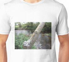 mayfly (Ephemera danica) Unisex T-Shirt