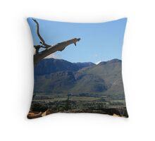 Beautiful Paarl Valley Throw Pillow