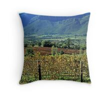 Paarl Valley  Throw Pillow