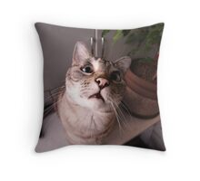 Unbelievable! Tell me more! Throw Pillow