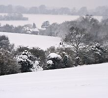 View Across Langley Vale by Mike Freedman
