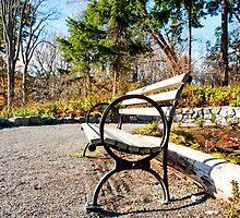 Park bench by Jaime Pharr