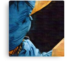 her blue dress Canvas Print