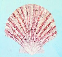 Scallop Shell  by Ann Marie Coolick