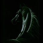 Horse by Maureen Bloesch