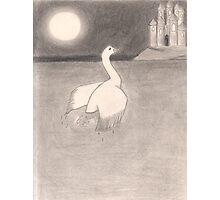 The Swan Princess Photographic Print