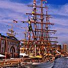 Sail Boston -  Cisne Branco by LudaNayvelt