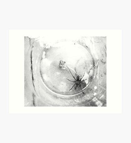 jar captive Art Print