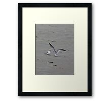 You Did What? Framed Print