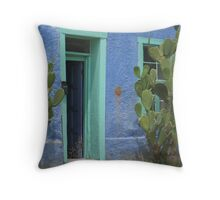Doorway framed with Burbank Cactus in the Barrio Throw Pillow