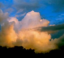 Cloud Imaginations:  Apricot Poodle by Daneann