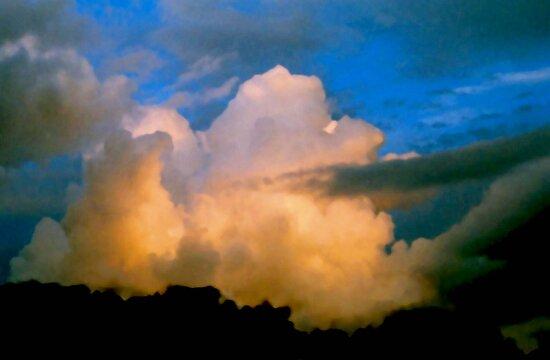 Cloud Imaginations:  Apricot Poodle by Daneann