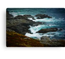 Shad Bay Shore Canvas Print