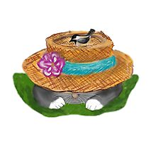 Garden Hat Cat Nap with a Chickadee Photographic Print