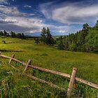 Sunday Fence by B Spencer