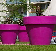 Belonging to the Jolly Green Giants Garden................ by Larry Llewellyn