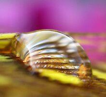 Gold Lust by Tara Lemana