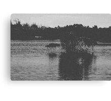 Nature in BW Canvas Print