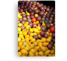 Tomato Pile Canvas Print