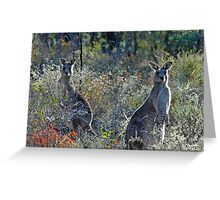 What's going on? Greeting Card