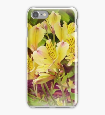 Peruvian Lily iPhone Case/Skin