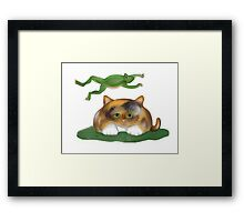 Leap Kitty played by Frog Framed Print