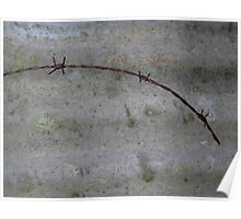 Rusty Barbed Wire Poster