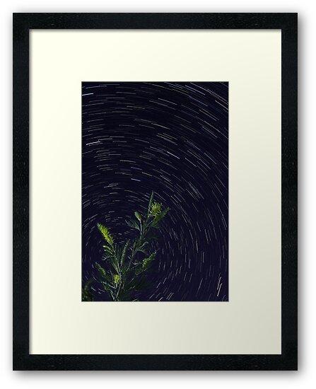 Star Trails  by EOS20
