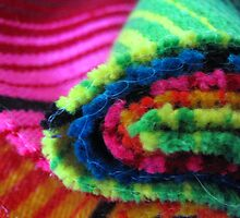 Mexican Multicolours by Kylie Newton