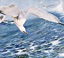 Sea Gull Over the Ocean Painting by goldenmenagerie