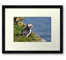 A successful fishing trip Framed Print